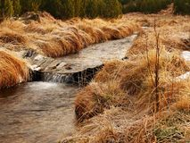 Mountain stream at beginning of winter time, old orange dry grass. Mountain stream at beginning of winter time, old orange dry grass on both banks, ice on Royalty Free Stock Image