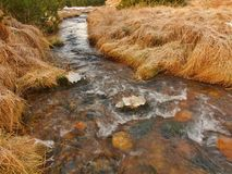 Mountain stream at beginning of winter time, old orange dry grass. Mountain stream at beginning of winter time, old orange dry grass on both banks, ice on Stock Image