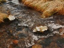 Mountain stream at beginning of winter time, old orange dry grass. Mountain stream at beginning of winter time, old orange dry grass on both banks, ice on Stock Photography