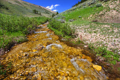 Mountain Stream - Bighorn National Forest Royalty Free Stock Image