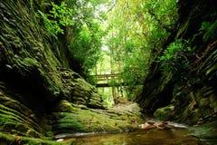 Mountain stream bridge. Looking up at a bridge over a mountain creek Royalty Free Stock Photos