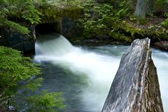 Mountain Stream and Bridge Stock Image