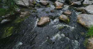 Mountain stream, brook, river and stones stock video
