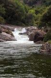 Mountain stream in California Stock Photography