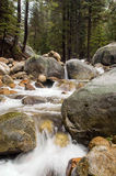 Mountain stream in California Royalty Free Stock Image