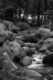 Mountain stream in California Stock Photos