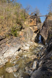 Mountain stream canyon Stock Images