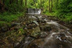 Mountain stream in Carpathians Stock Photo