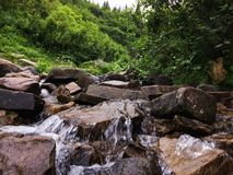 Mountain stream in the Carpathians stock images