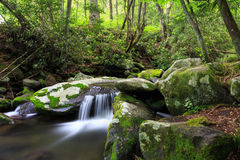 Mountain Stream Cascade Great Smoky National Park Tennessee Stock Photography