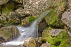 Mountain stream with cascading waterfalls Royalty Free Stock Photos