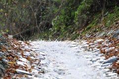 Mountain Stream Close Up Stock Photos