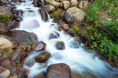 Mountain Stream Closeup Stock Photos