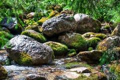 Mountain stream. Closeup of stones in mountain stream Royalty Free Stock Image