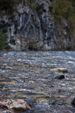 Mountain stream. Cold fast running stream, Slovenia Royalty Free Stock Image