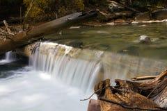 Mountain Stream in Colorado Mountains Stock Photography