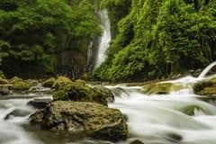 Mountain Stream-Costa Rica Stock Photos