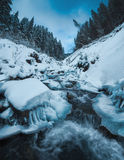 Mountain stream covered with fresh snow Stock Photos