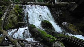 Mountain stream in Crimea stock video