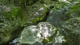 Mountain stream in Crimea Royalty Free Stock Photo