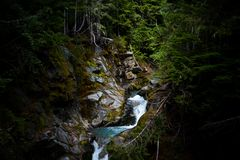 Mountain Stream Cutting Through Rock in Forest stock image