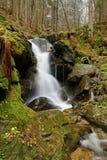 Mountain stream in Czech republic Stock Image