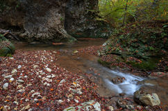 Mountain stream in the deep gorge in the rocks in autumn. Caucasus, Russia Royalty Free Stock Image