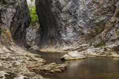 Mountain stream in a deep gorge Stock Photos