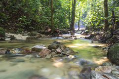 Mountain stream. In deep tropical forest Royalty Free Stock Photos