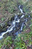 A mountain stream descends through a Spanish forest in winter stock photo