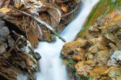Mountain stream detail Stock Photography