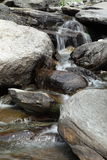 Mountain stream in Dharamsala Stock Image