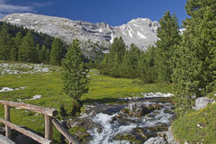 Mountain stream in the Dolomites Royalty Free Stock Photography