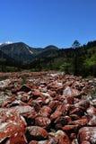 Mountain Stream, Fall Colors Stock Photo