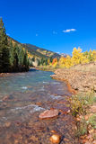 Mountain Stream in Fall Royalty Free Stock Photos