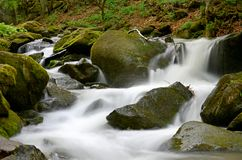 Mountain stream. Fast flowing waters, water among the rocks, fast water, foamy waters, rivers, landscape Stock Photos