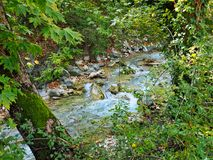 Mountain Stream. A fast running stream through a mountain forest. Actual location the Pindus Mountains, Greece Stock Images
