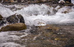 Mountain stream. Stock Images