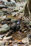 Mountain stream flowing Royalty Free Stock Photo