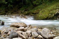 Mountain stream. Flowing over rocks Royalty Free Stock Photos