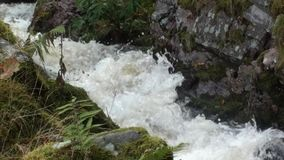 Mountain stream flowing quickly after rainfall in the Highlands of Scotland stock video footage