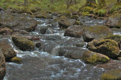 Mountain stream. Mountain stream flowing among the rocks covered with green moss Stock Photo