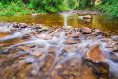 Mountain stream flowing between the stones Stock Images