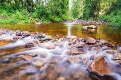 Mountain stream flowing between the stones Royalty Free Stock Photos