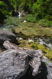 The mountain stream flows among the rocks and trees. Greece, the slope of Mount Olympus Royalty Free Stock Image