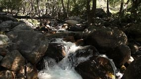 Mountain stream flows through stones, Altai, Russia stock footage