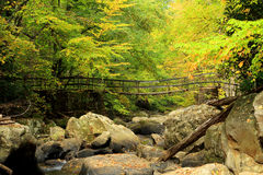 Mountain stream footbridge. At Babcock State Park, West Virginia Stock Photography