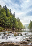 Mountain stream. In a  forest Royalty Free Stock Image