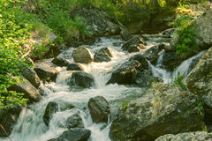 Mountain stream in the forest Stock Photo