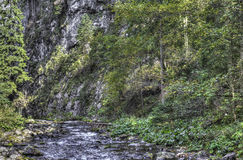 Mountain stream in the forest.  HDR color photo Royalty Free Stock Photography